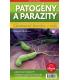 Patogény a parazity