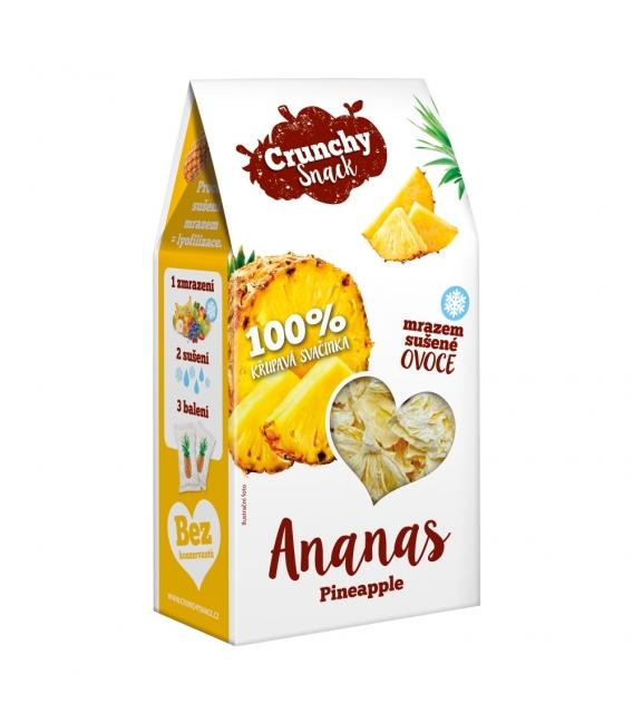 Crunchy Snack, mrazom sušený Ananás, 20g