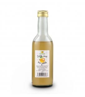 Bio jablčný ocot 250 ml - Sad Lívia