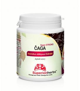 Čaga, 100% Sibírska čaga - Superionherbs, 90 kps x 500 mg