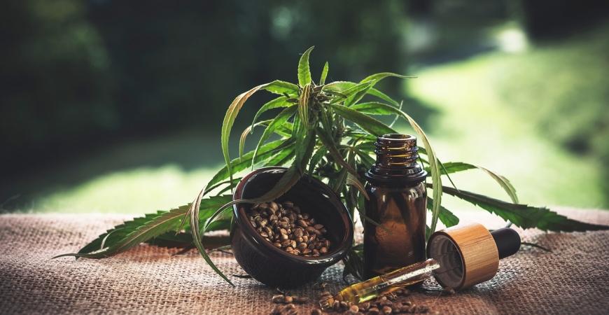 CBG olej: vedecky potvrdené účinky
